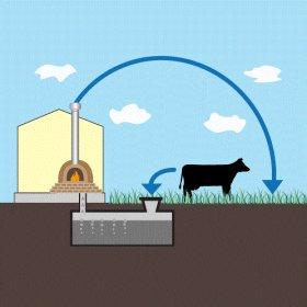 Как соорудить установку для получения биогаза: делаем биореактор своими руками