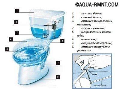 Все унитазы состоят из чаши и ёмкости с водой