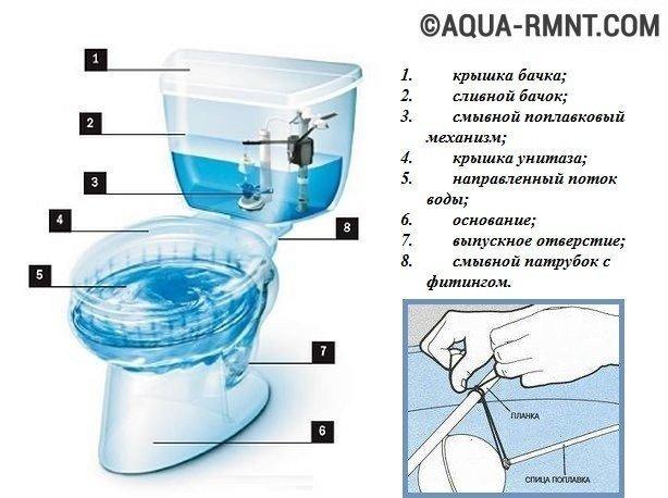 Все унитазы состоят из чаши и