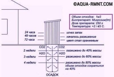 Схема очистки выгребной ямы биопрепаратами