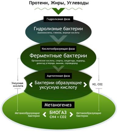 Схема выработки биогаза