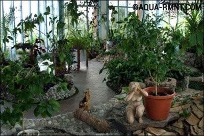 Оранжерея в загородном доме