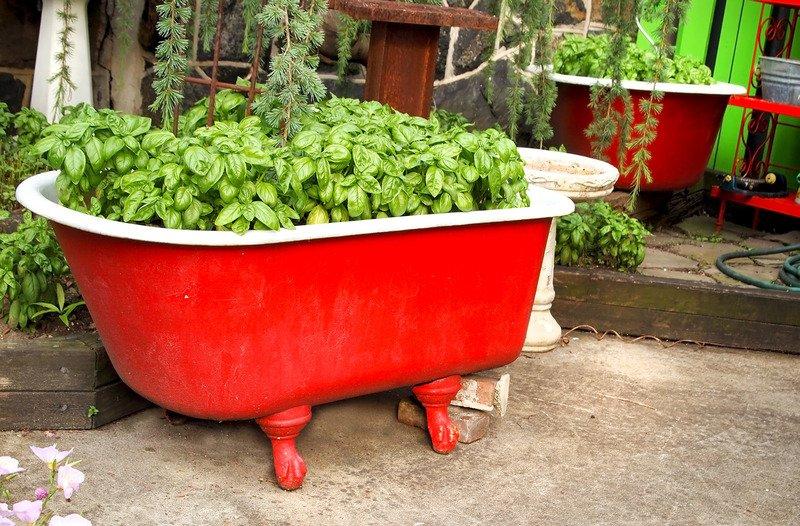 Красота и польза: как использовать старую ванну на даче