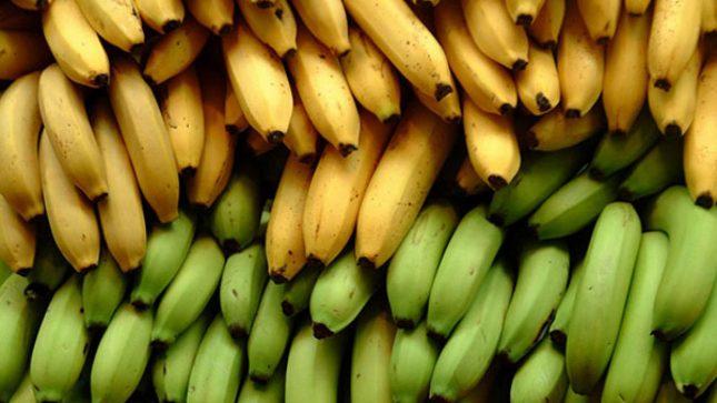 Жёлтые и зелёные бананы