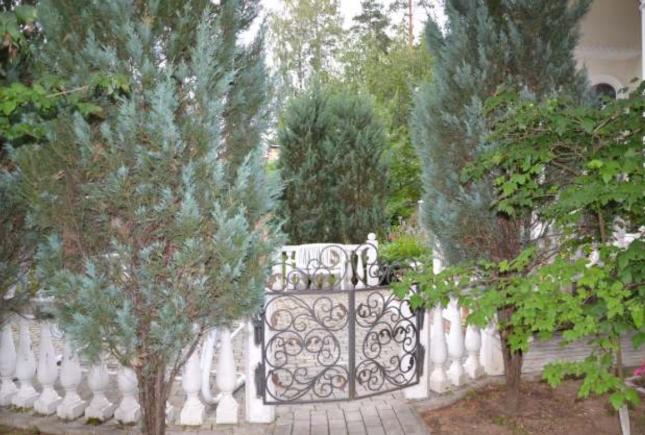 дом Юрия Лозы