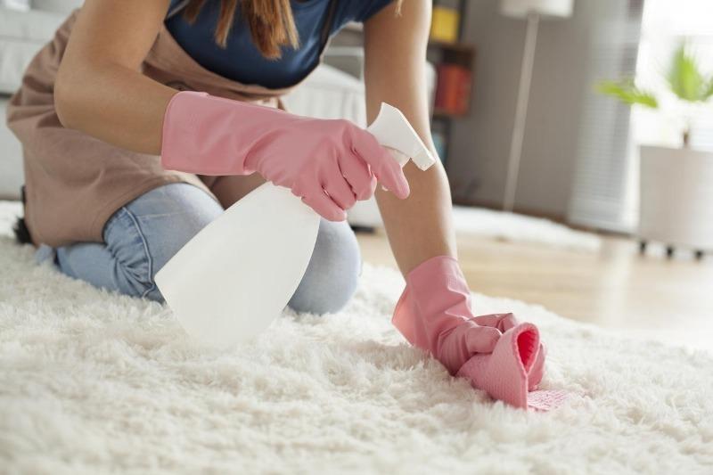 7 эффективных домашних средств, которые помогут уменьшить количество пыли и грязи в доме